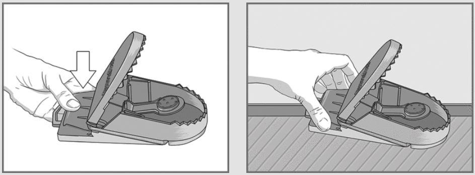 trampa-cebo-rata-supercat-2.JPG