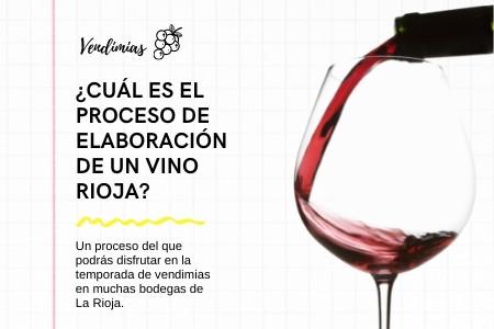 Disfruta de la etapa de elaboración de un vino de Rioja